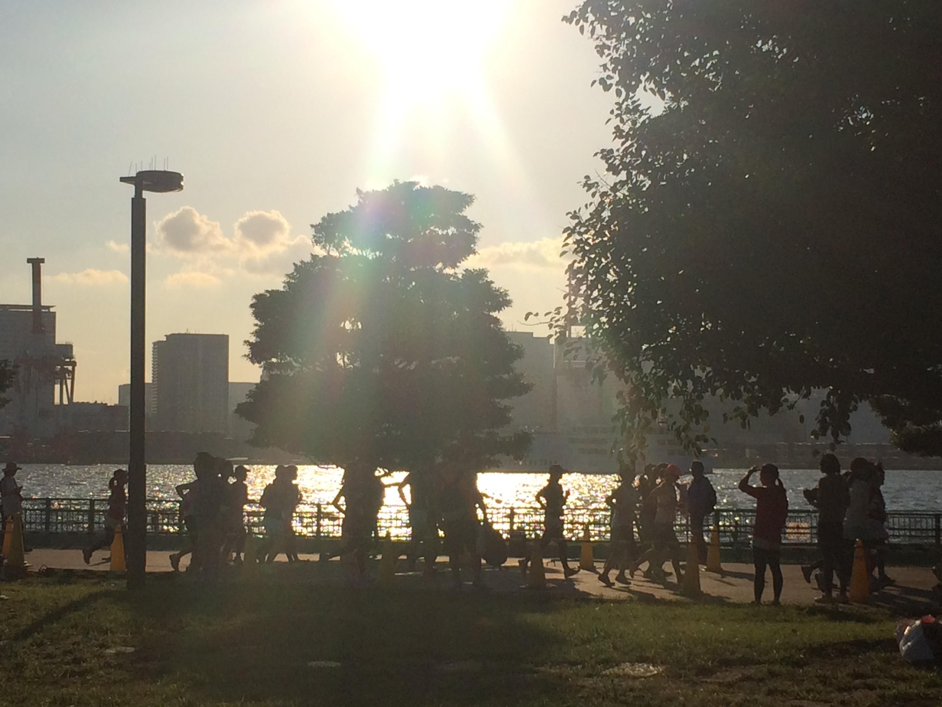 夕陽RUN