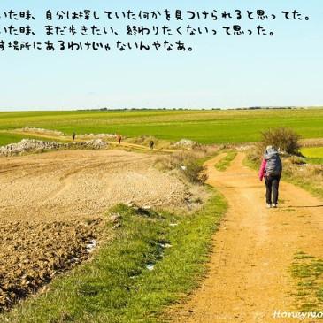 ハネムーンマラソン空白の1ヵ月を執筆中☆